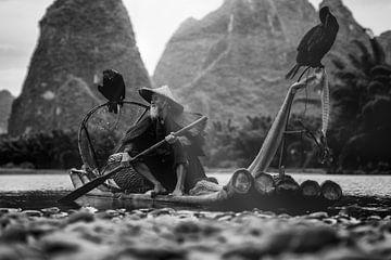 Vissen met aalscholvers van Michael Bollen