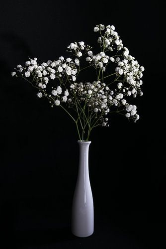 Stilleven met witte bloemen in witte vaas