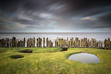 Schlammloch Friesland von Silvia Thiel