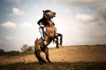 Steigendes Pferd mit Reiter von Günter Albers