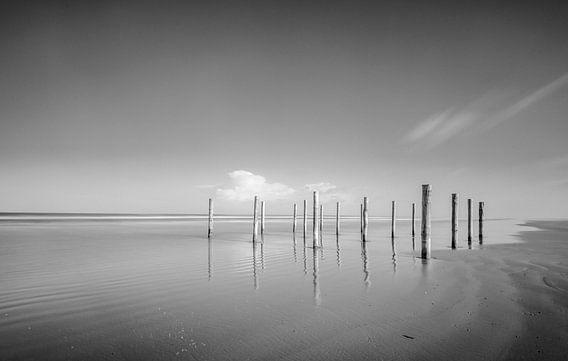 Palen op het strand van Schiermonnikoog