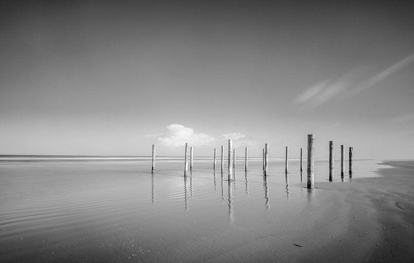 Polonais à la plage pendant un beau jour d'hiver à l'île de Schiermonnikoog dans la région de Wadden sur Sjoerd van der Wal