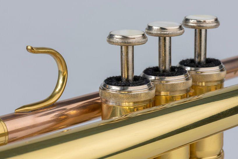 Muziekinstrument trompet in detail sur Tonko Oosterink