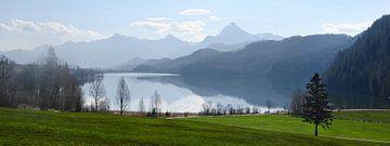 weissensee, see im morgenlicht vor den blauen bergen der bayerischen alpen bei füssen im allgäu, süd von Maren Winter
