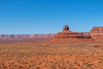 Valley of the Gods, Utah von Richard van der Woude