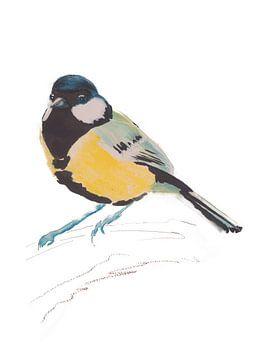 Koolmees bijzondere vogel illustratie van Angela Peters
