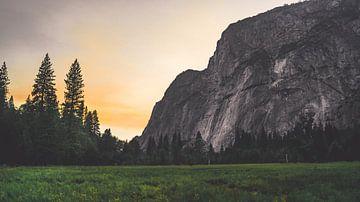 Uitzicht over weiland in Yosemite  van