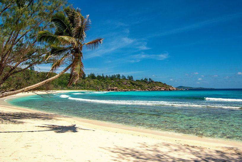 Droomstrand Anse Cocos - La Digue - Seychellen van Max Steinwald