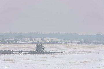 Sneeuwlandschap van Ans Bastiaanssen