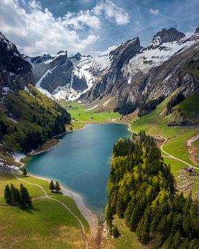 SeeAlpsee, Switzerland van Niels Tichelaar