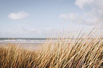 Zee en de duinen bij Hoek van Holland van Evelien Lodewijks
