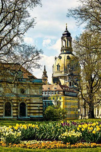 Frauenkirche Dresden im Frühling von