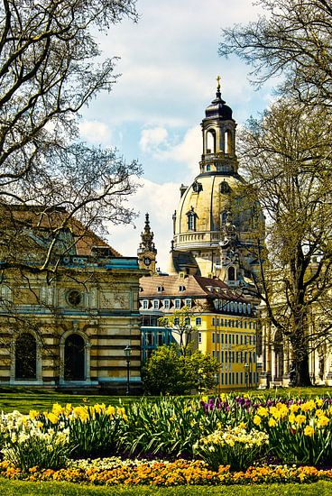 Frauenkirche Dresden im Frühling von Max Steinwald