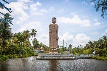 Boeddhabeeld te Sri Lanka. van Rony Coevoet