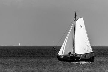 Zeilschip Robbe op het Markermeer van Jack Koning