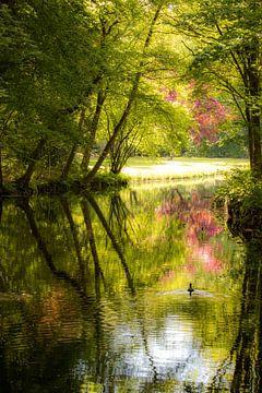 Flusslandschaft mit einem Wasservogel von Anita van Gendt