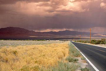 Death Valley Charles Brown hwy  van