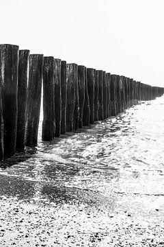 Strandpalen rij in het water van Manon van Bochove