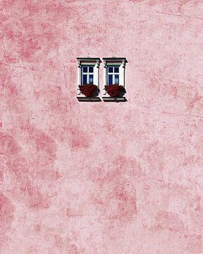 rosa Wand, aRRO  von 1x