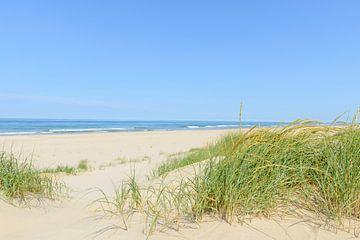 Sommer am Strand von