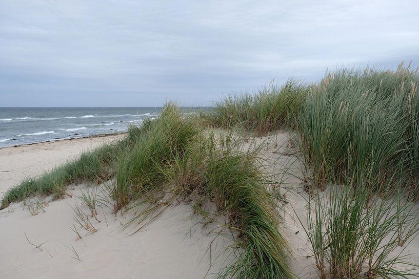 Grauer Himmel von Ostsee Bilder