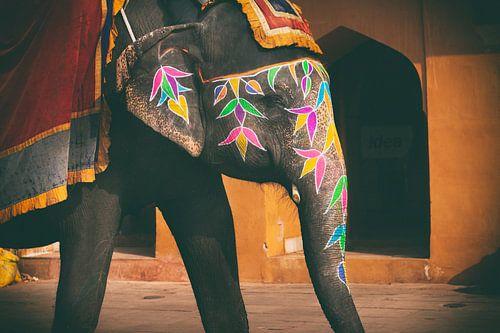 Gekleurde olifanten in Jaipur