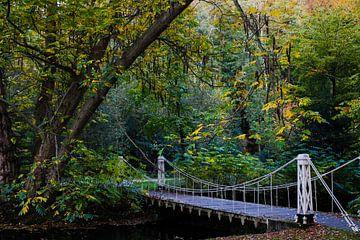 Bruggetje in Sonsbeekpark van Mischa Verhoeven