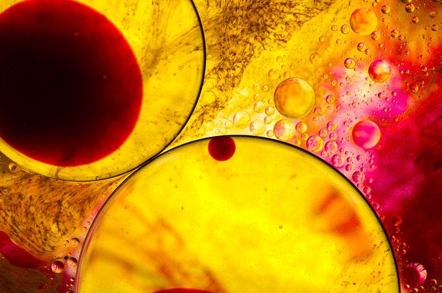 Cellen rood, oranje, geel van Edith Lüthi