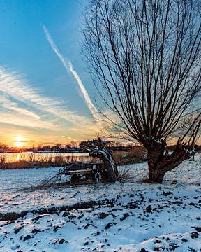 Sneeuw op het land van Wesley Kole
