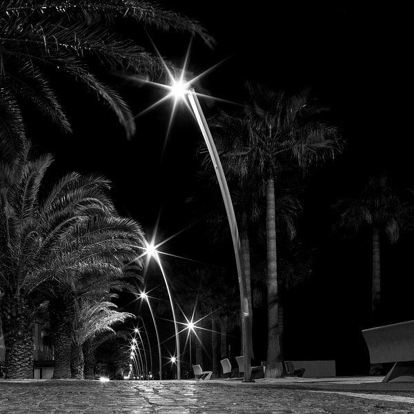 Licht in Portugal van Elly Damen