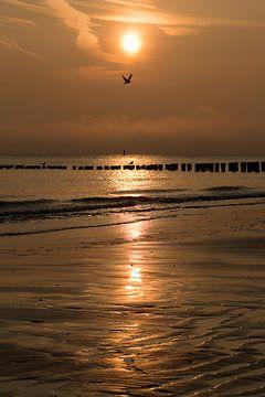 Seeland Sonnenuntergang von Mario Lere