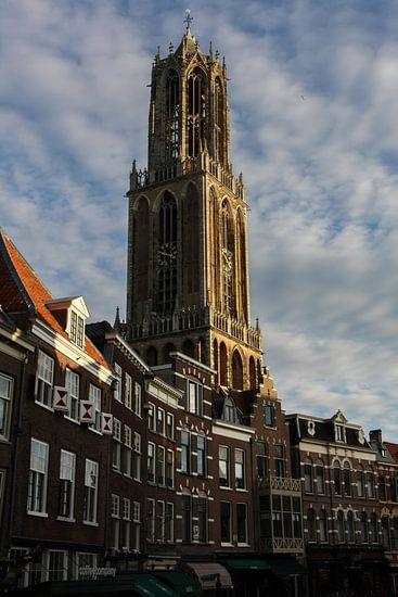 Dom, Utrecht van Marjolein Boers