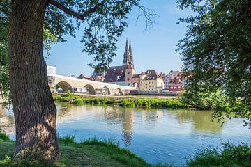 Skyline van Regensburg in de Opper-Palts van Animaflora PicsStock