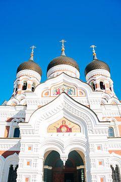 Alexander Nevski Kathedraal van Patrycja Polechonska
