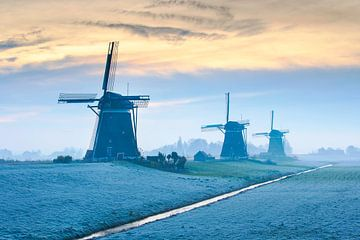 Die drei Windmühlen von Stompwijk an einem schönen Wintermorgen von Eelco de Jong