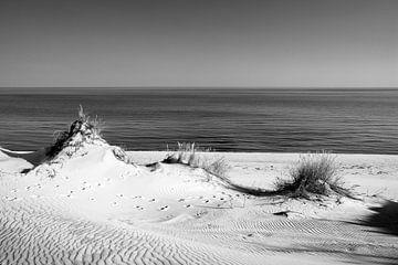 Duinen en de zee in zwart-wit II