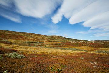 Der Herbst auf dem Berg von Sran Vld Fotografie