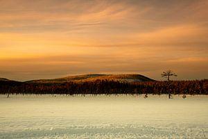 Schneelandschaft in Schweden von Ed Klungers