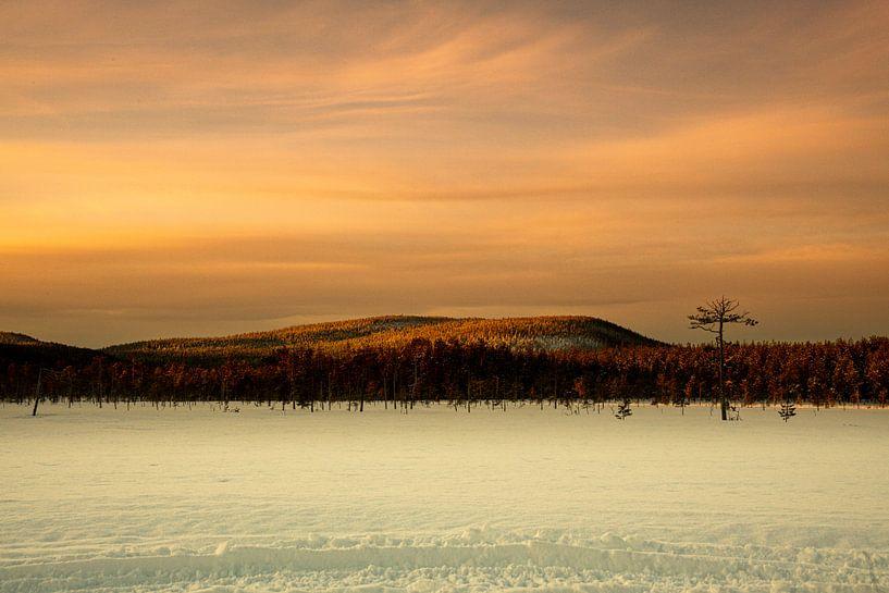 sneeuwlandschap in Zweden van Ed Klungers