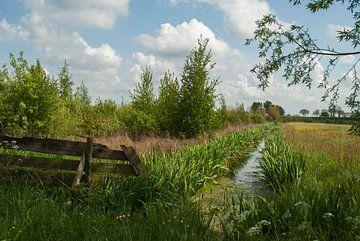 Groen Nederland van Anco van der Kolk