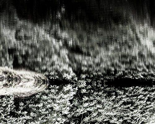 Wind   Abstract natuurbeeld