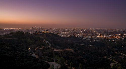 Los Angeles skyline von Reinier Snijders