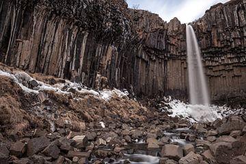 Svartifoss waterval in IJsland van Albert Mendelewski
