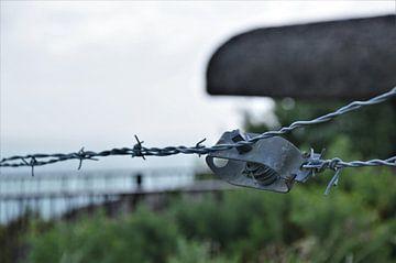 Prikkeldraad in Normandië van DoDiLa Foto's