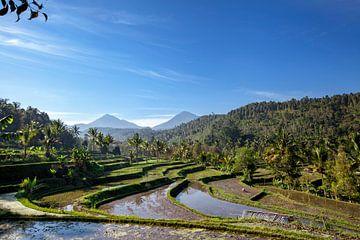 de 3 heilige bergen van Bali (Mt Batur, Mt Abang, Mt Agung) in de ochtend zon van Tjeerd Kruse
