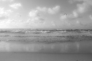 Kiter am Strand 1.0 von Niek Traas