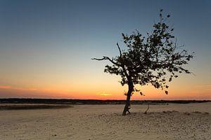 Sunset @ the Dunes I