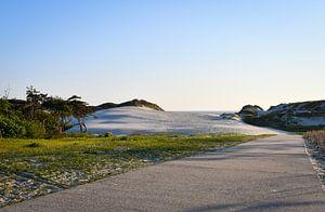 Wandelpad door de duinen van bart hartman