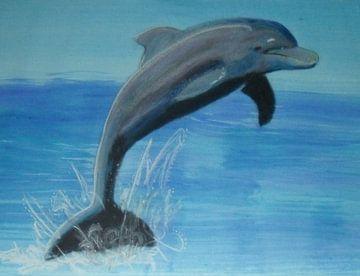 Delfin van Babetts Bildergalerie