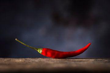 Rode peper op Hout van Mister Moret Photography